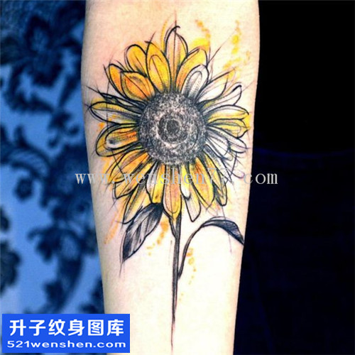 女性小臂欧美向日葵纹身图案大全