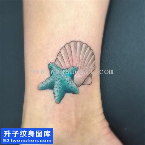 女性脚踝欧美贝壳纹身图案大全