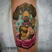 女性小臂欧美彩色狗荷花纹身图案大全