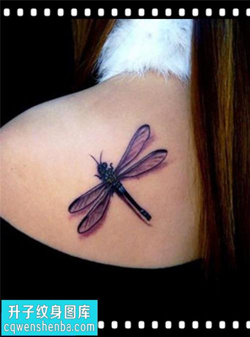 女性后背欧美蜻蜓纹身图案大全