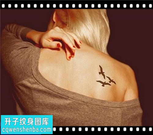 女性后背小清新海鸥纹身图片大全