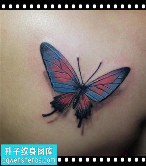 女性后背传统蝴蝶纹身图案大全