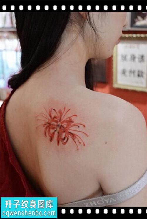 女性后背传统彩色彼岸花纹身图片大全