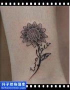 女性脚踝小清新英文向日葵纹身图片大全
