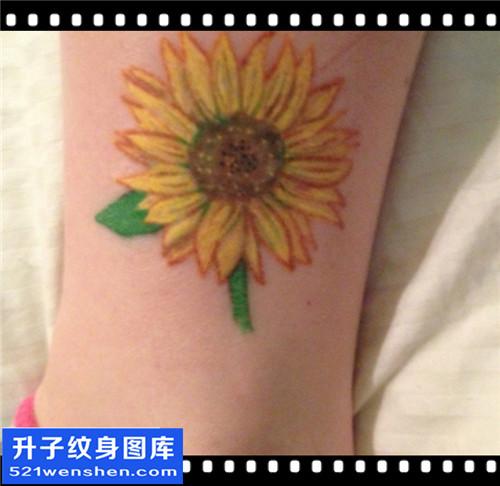 女性脚踝欧美彩色向日葵纹身图案大全