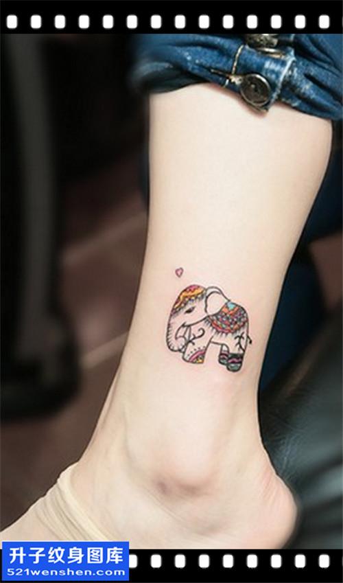 女性脚踝小清新大象纹身图案大全