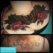 女性欧美花胸玫瑰蝴蝶遮盖纹身图片大全