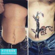 男性腹部欧美树子遮盖纹身图案大全