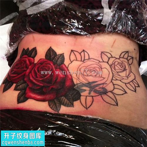 女性腰部欧美玫瑰遮盖纹身图案大全