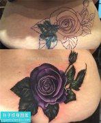 女性腰部欧美玫瑰遮盖纹身图片大全