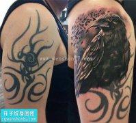 男性大臂欧美乌鸦遮盖纹身图案大全