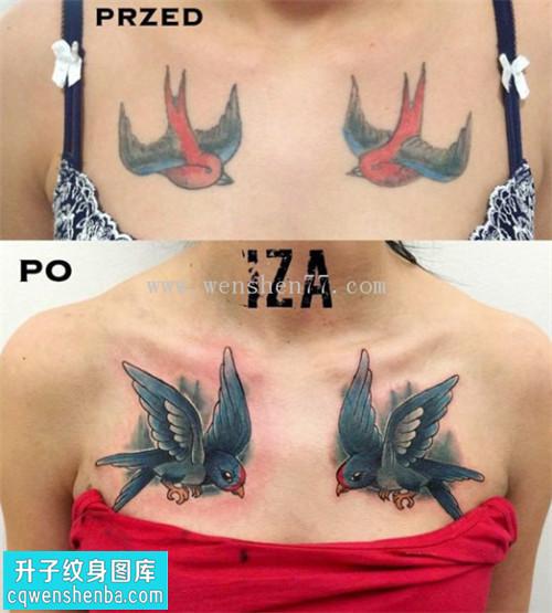 女性胸部噢诶燕子纹身图案大全