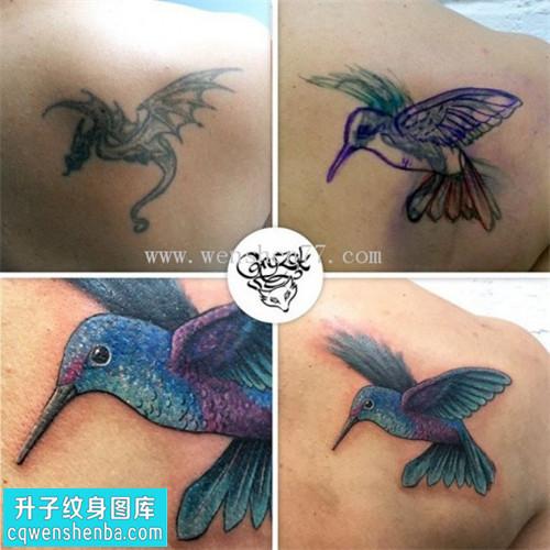 女性后背欧美鸟遮盖纹身图案大全