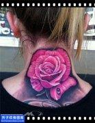 女性欧美脖子彩色玫瑰纹身图案安全