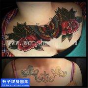 女性花胸欧美蝴蝶玫瑰纹身图案大全