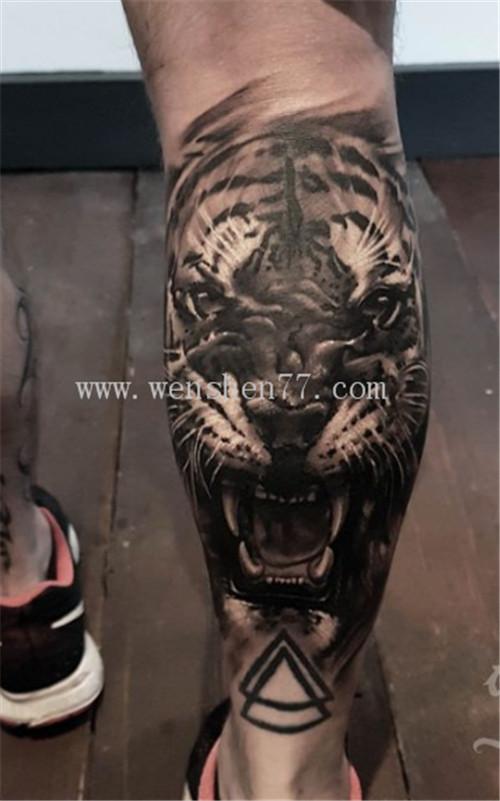 小腿写实老虎纹身图案大全  大学城纹身