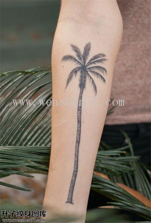 手臂内侧椰子树纹身图案 黄泥磅纹身