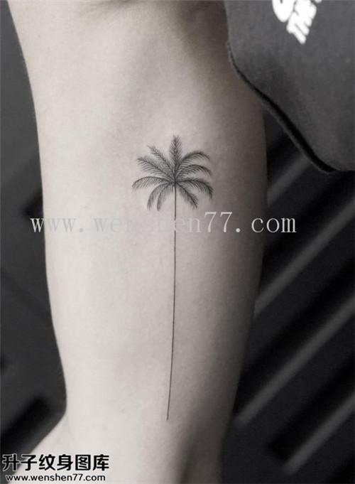 手臂内侧椰子树纹身图案大全 大学城纹身