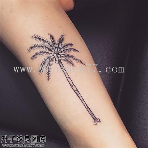 小腿椰子树纹身图案大全 重庆纹身哪里好