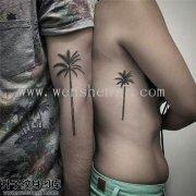 侧腰椰子树纹身图案大全 七星岗纹身