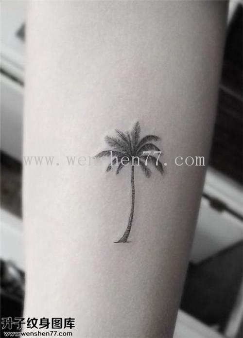 手臂椰子树纹身图案大全 李家沱纹身