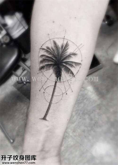 手臂欧美椰子树纹身图案大全 石桥铺纹身
