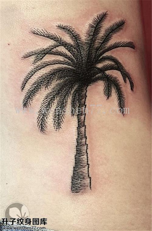 侧腰椰子树纹身图案大全 李子坝纹身