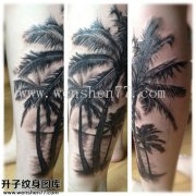 欧美植物椰子树纹身图案大全 綦江纹身