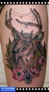 女性大臂欧美鹿纹身图案大全
