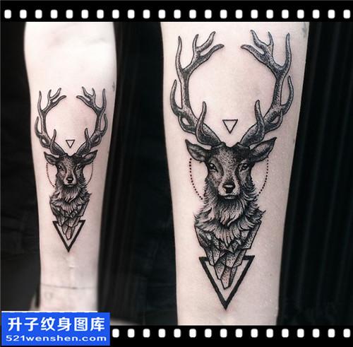 女性小臂点刺鹿纹身图案大全