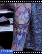 男性小臂欧美鹿纹身图片大全