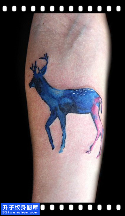 女性大臂欧美鹿纹身图片大全