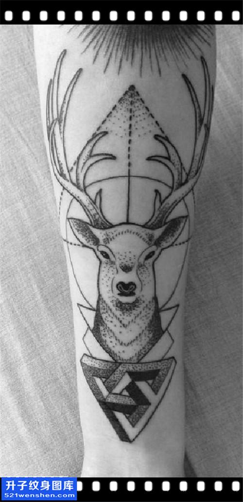 重庆纹身哪里好 男性小臂点刺鹿纹身图片大全
