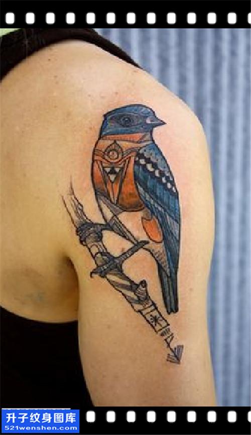 男性大臂欧美鸟纹身图案大全