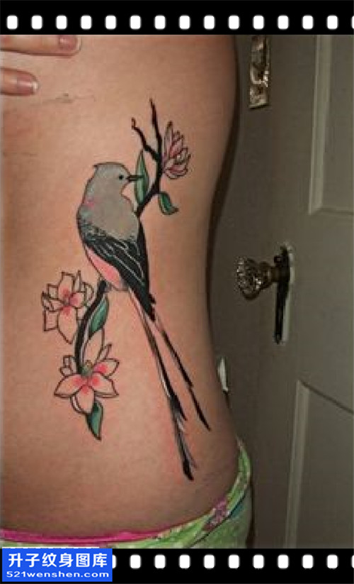 女性欧美侧腰鸟纹身图案大全