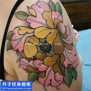 女性大臂传统彩色牡丹纹身图片大全