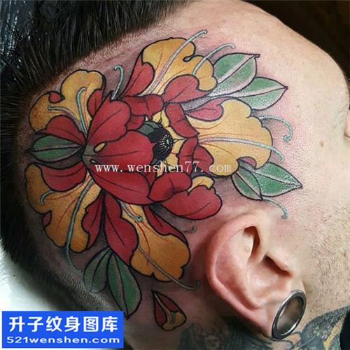 男性头部传统彩色牡丹纹身图案大全
