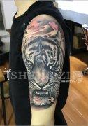 手臂欧美老虎纹身图案