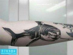 手臂黑灰凶猛鲨鱼纹身图案
