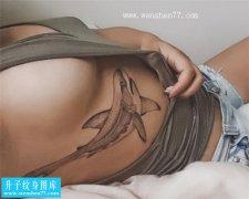 美女性感侧腰鲨鱼纹身图案