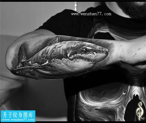 非常个性的手臂外侧黑灰写实鲨鱼纹身图案