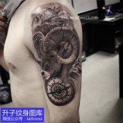 男士手臂外侧黑灰羊头纹身图案 白羊座纹身