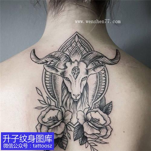 女性后背黑灰欧美点刺羊头玫瑰花纹身图案 白羊座