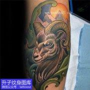 小腿外侧彩色羊头纹身图案 白羊座