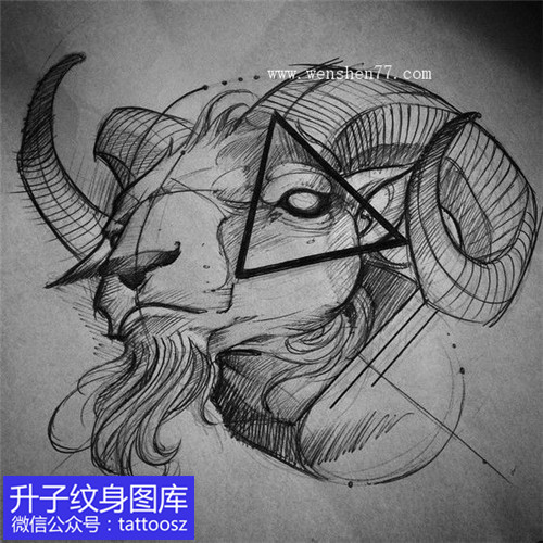 羊头纹身手稿图案