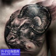 胸口黑灰羊头纹身图案