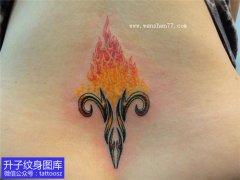 后腰白羊座星座纹身图案与火焰纹身