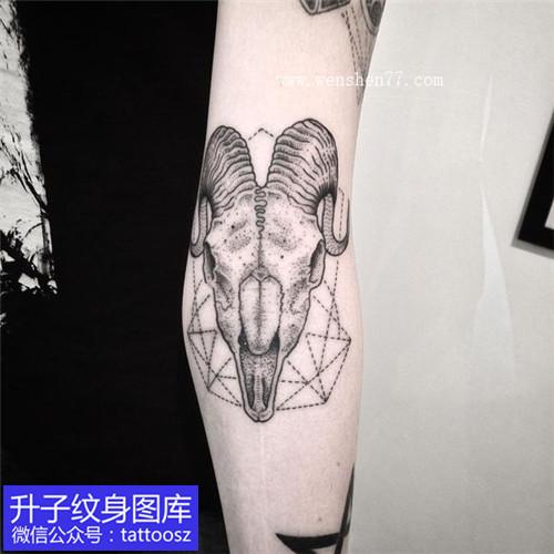 手臂黑灰点刺羊头纹身图案