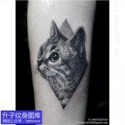脚踝欧美风格黑灰猫咪纹身图案