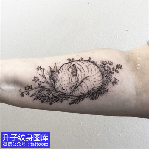 大臂内线条感猫咪纹身图案